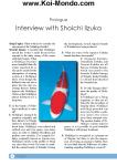 41089255 nishikigoi by koi mondo page 141 106x150 Cuplikan Buku Nishikigoi Mondo